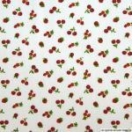 35 pique de coton fruits rouges